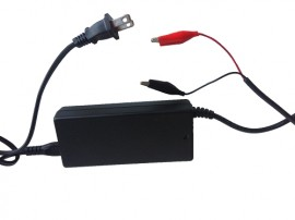 Battery Charger for Lithium Iron battery